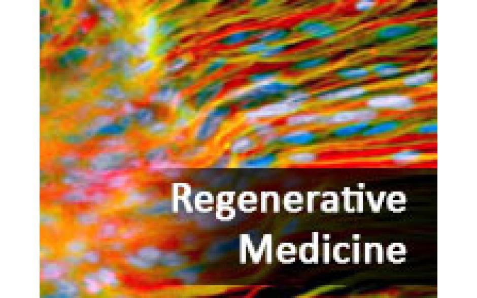 Regenerative Medicine: A Change in the Veterinary Practice Paradigm (October 2014)
