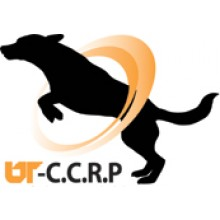 University of Tennessee: CCRP Canine I: Introduction to Canine Rehabilitation