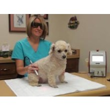 Introduction to Laser Therapy for the Veterinary Technician, Veterinary Assistant, & Veterinary Nurse