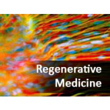 Regenerative Medicine: A Change in the Veterinary Practice Paradigm (October 2014)
