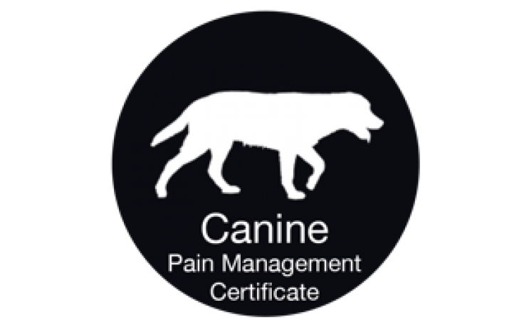 University of Tennessee: Companion Animal Pain Management Certificate Course